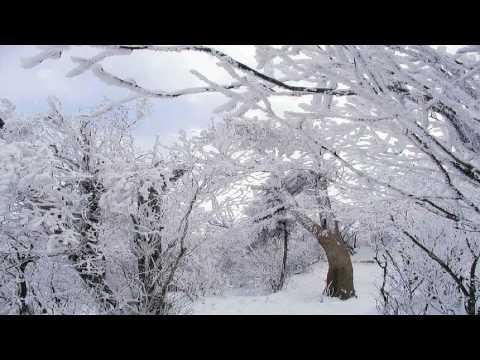 """Vivaldi - The Four Seasons """"Winter"""" / Le Quattro Stagioni """"L'inverno"""" (Il Giardino Armonico)"""