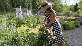 Keeping Flowers Fresh | POTAGER WEEK 9 | Function of Beauty