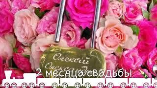 2 месяца свадьбы)))) 🇺🇦🍾🍷🎂
