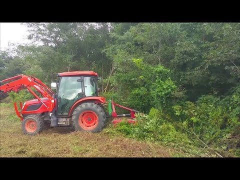 Bush hogging 7 ft brush Kioti NX6010 and Bush hog BH26