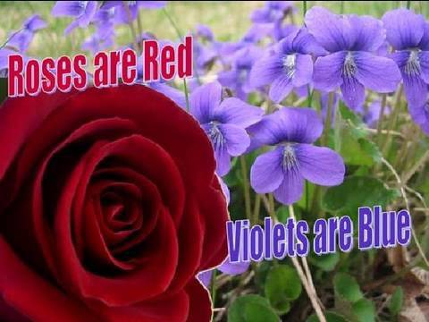 ROSES ARE RED & VIOLETS ARE BLUE - YouTube