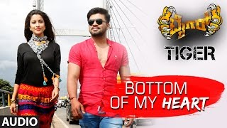 Download Hindi Video Songs - Tiger Kannada Movie Songs | Bottom Of My Heart Full Song | Pradeep, Madhurima | Arjun Janya