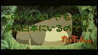 Critique DVD My Neighbor Totoro