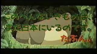 Critique DVD My Neighbor Totoro