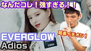 EVERGLOW 「Adios」MV Reaction&Review エバグロの時代が来た!