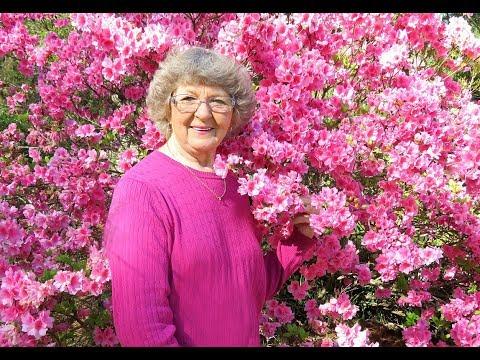 My Walk In In My Yard And Woods In Spring In Ga U.S.A.