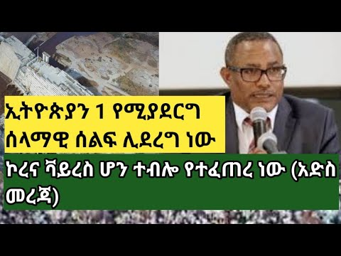 ethiopia: እጅግ ታላቅ ሰላማዊ ሰልፍ ሊደረግ ነው