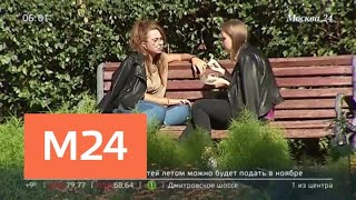 Смотреть видео Когда закончится климатическое лето в Москве - Москва 24 онлайн