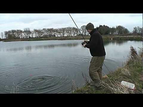 Mick Brown Float Fished Suspended Deadbait
