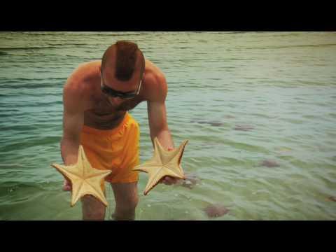 Beach of the Stars in Bocas del Toro, Panama