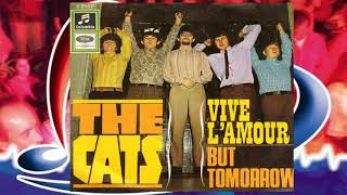 Watch Cats But Tomorrow video
