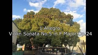 [DTM] 1.Allegro. Beethoven Violin Sonata No.5 in F Major Op.24