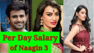 Per Day Salary of Naagin Season 3 Casts