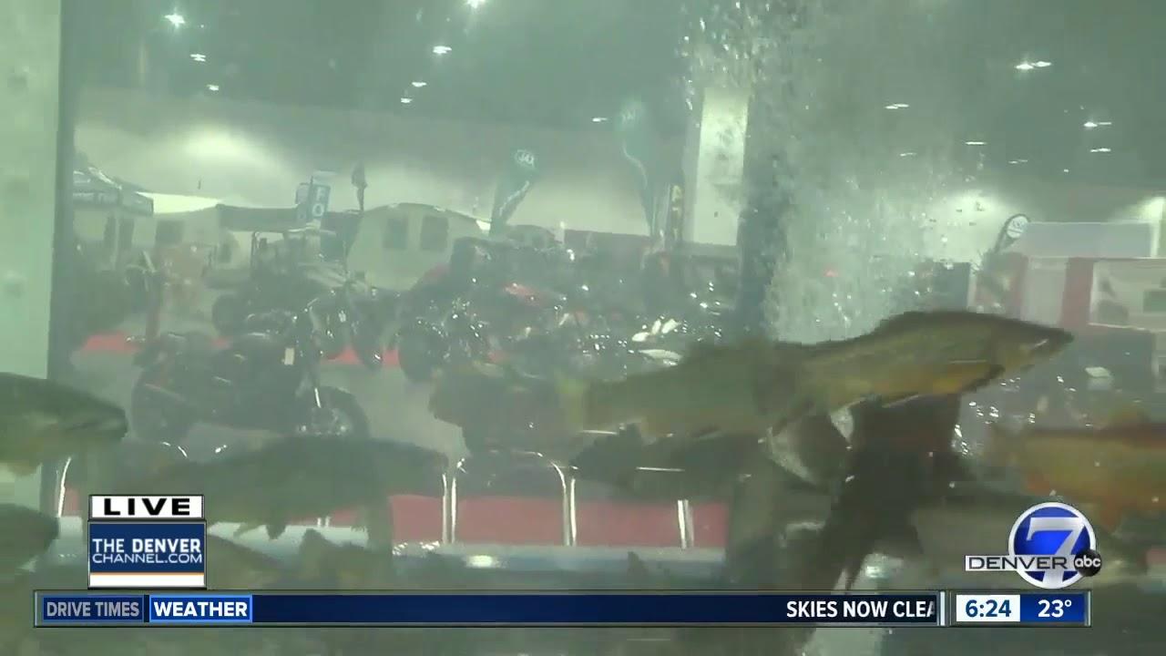 5,000 gallon fish aquarium at Sportsmen's Expo