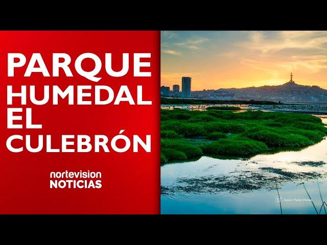 PARQUE HUMEDAL EL CULEBRÓN - COQUIMBO