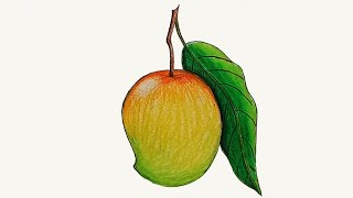 How to draw a mango step by step