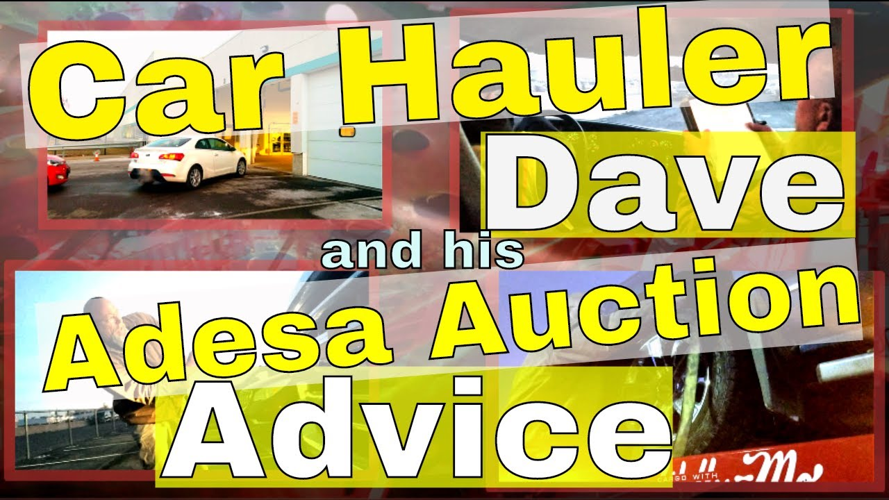 Adesa Auto Auction New Car Hauler Transport Tips - Auto