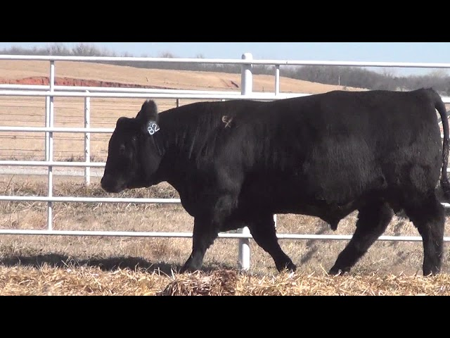 Express Ranches Lot 82