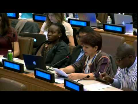 Ms. Beverly Longid - Indigenous Peoples Movement for Self-Determination - UN Post-2015 negotiations