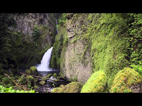 Wahclella Falls, Oregon: 1 Hour of Nature Sounds: Relaxing Nature Ambience