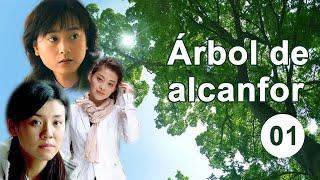 Árbol de alcanfor 01 Telenovela china Sub Español 香樟树