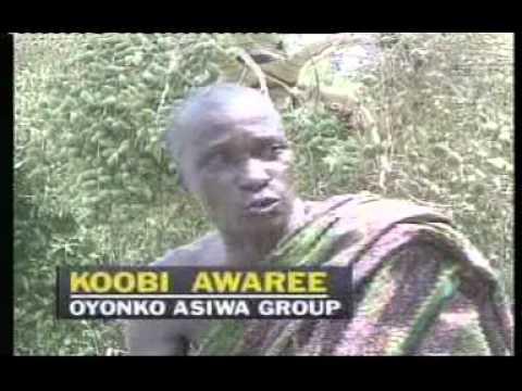 koobe aware