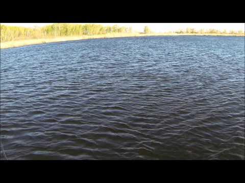 Часть 4 Щука Кружки, жерлицы, поставушки рыбалка без