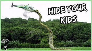 What If The Titanoboa Snake Was Still Alive Today?