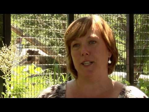 'Checkout' the Pueblo Zoo