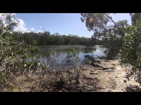 Kawana - Canal fishing