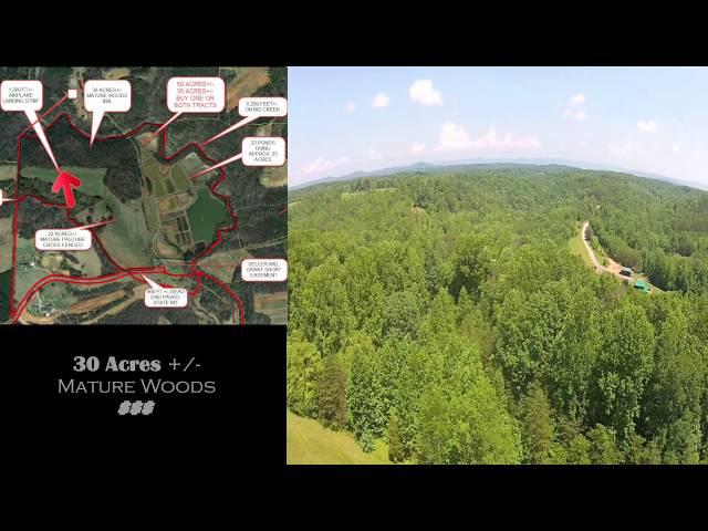 85 Acres, 26 fish ponds, airplane landing strip, 5200 ft on Big Creek for sale!