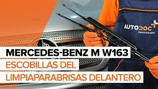Cómo reemplazar Cable de accionamiento freno de estacionamiento MERCEDES-BENZ M-CLASS (W163) - tutorial