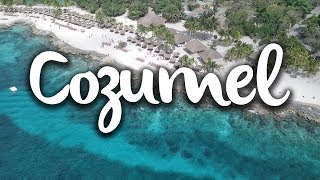 Cozumel, what to do in the seaweed free island