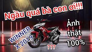 WINNER X LỘ DIỆN ẢNH THẬT 100%   THÔNG TIN MỚI NHẤT VÀ WINNER X 2019