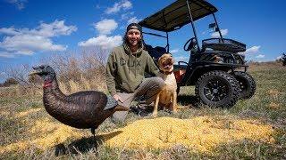 Turkey Hunting Prep in My BackYard!