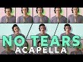 Ariana Grande - no tears left to cry [ACAPELLA COVER]
