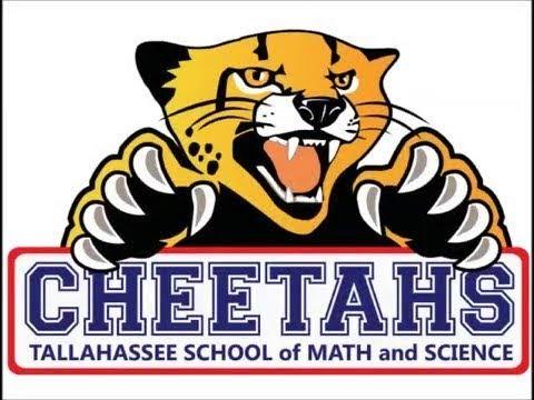 Cheetah Den 10-18