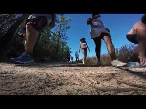 Caminhada - Baile de verão - Ninho do Açor 2016
