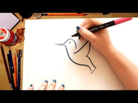 Como dibujar un Colibri - dibujos para niños - YouTube