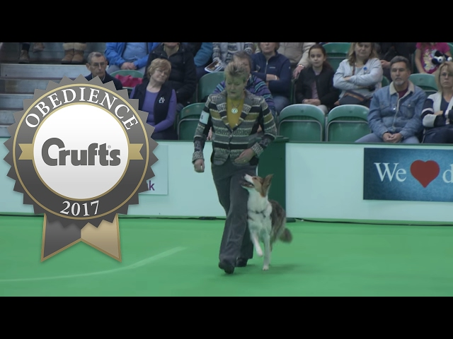 Obedience Championship - Bitches - Part 20 | Crufts 2017