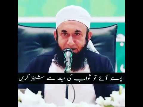 Beautiful message Molana Tariq Jameel by MK // She Trends MK