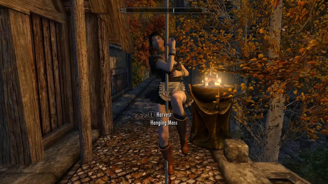 Skyrim v Mod Hight resolution with Dance mod