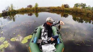 Pike fishing / twitching / Jackall Mag Squad 128