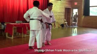 Testing Drive in Heiko, Zenkutsu, Kokutsu Dachi | Shuseki Shihan Frank Woon-a-tai 9th Dan IKD