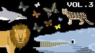 Animals Collection Volume 3 - Find the Animals, Whales, Big Cats - The Kids' Picture Show (Learning)