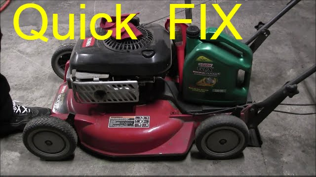 Can I Use Lawn Mower Gas In My Car