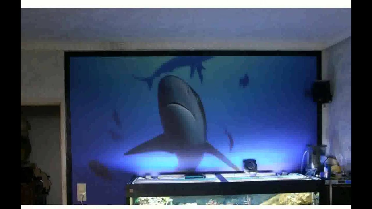 aquarium beleuchtung mit led sch ne youtube. Black Bedroom Furniture Sets. Home Design Ideas