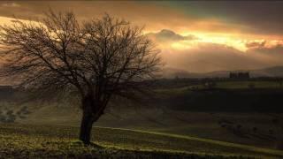 Schiller - Distance [HD]