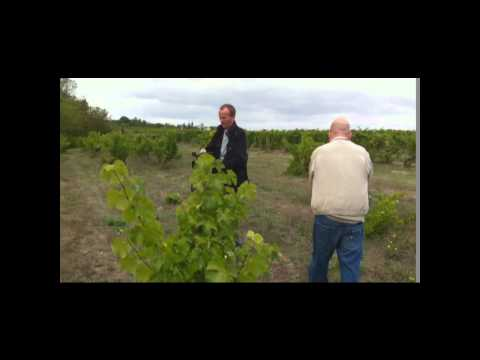 American Screenwriters Visit Domaine du Closel