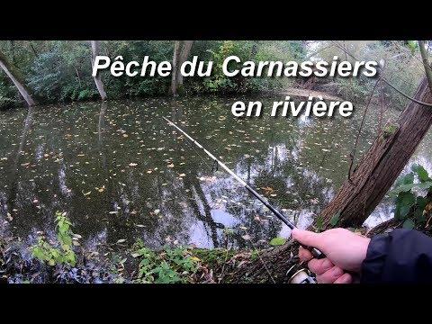 Pêche du Brochet, du Sandre...